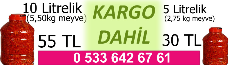 2014 Yeni Mahsül Gilaburu Siparişi Fiyatı